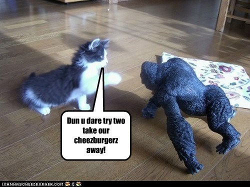 Cheezburger Image 5454664960