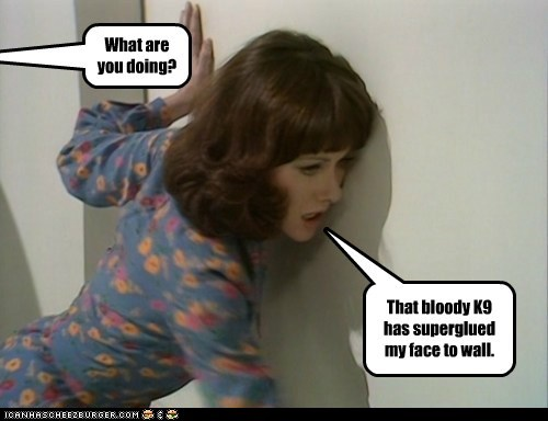 doctor who,Elisabeth Sladen,k9,sarah jane smith,wall
