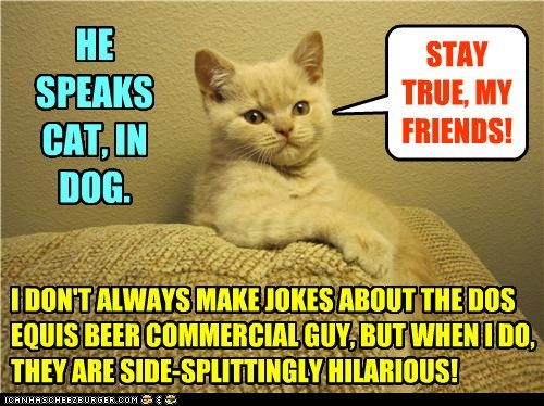I DON'T ALWAYS MAKE JOKES ABOUT THE DOS EQUIS BEER COMMERCIAL GUY, BUT WHEN I DO, THEY ARE SIDE-SPLITTINGLY HILARIOUS! STAY TRUE, MY FRIENDS! HE SPEAKS CAT, IN DOG.