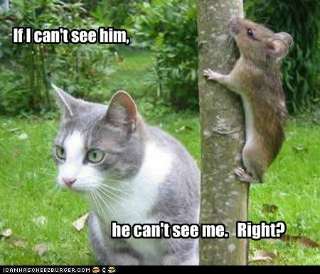 If I can't see him, he can't see me. Right?