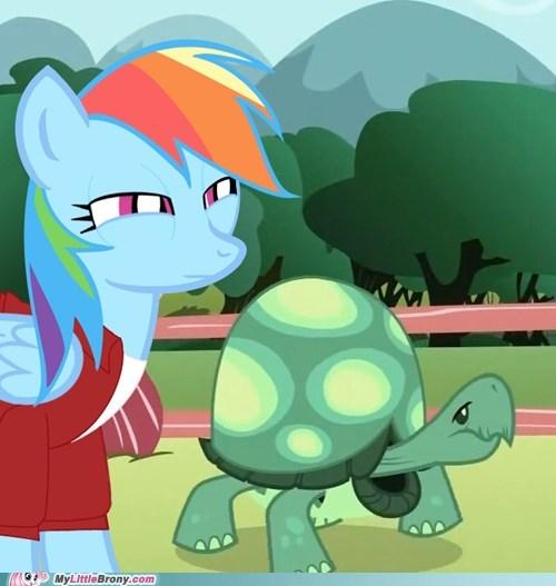 fry meme meme not sure if rainbow dash tank tortoise - 5456466688