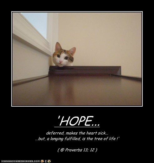 'HOPE... deferred, makes the heart sick... ...but, a longing fulfilled, is the tree of life !' ( @ Proverbs 13; 12 )