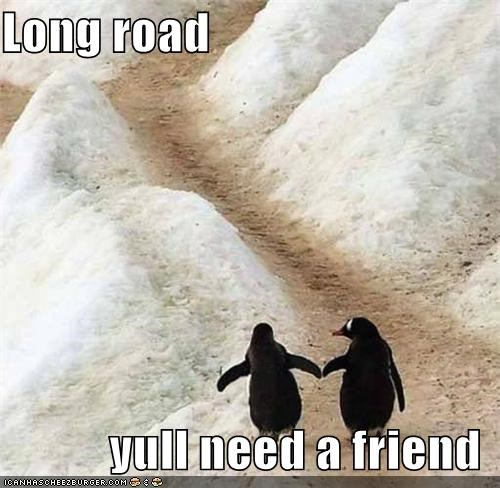 Long road             yull need a friend