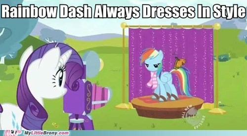 meme pet rainbow dash rarity style TV