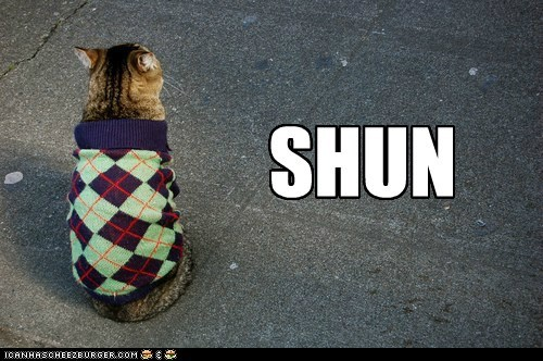 angry argyle caption captioned cat do not want shun shunning sweater upset - 5460016128