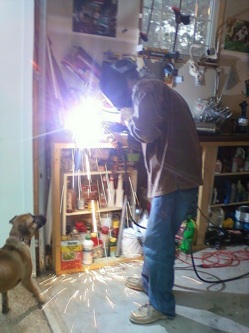 animals,Mad Science Monday,safety first,welding