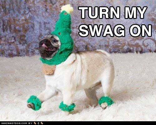 animals,awesome,christmas,dogs,happy,happy dog,i has a hotdog,pug,swag