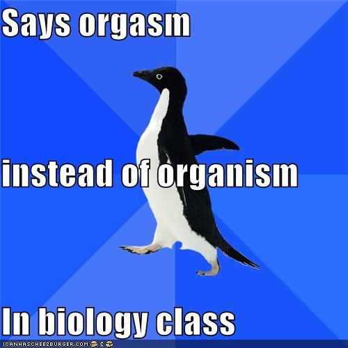 biology,class,organisms,school,socially awkward penguin