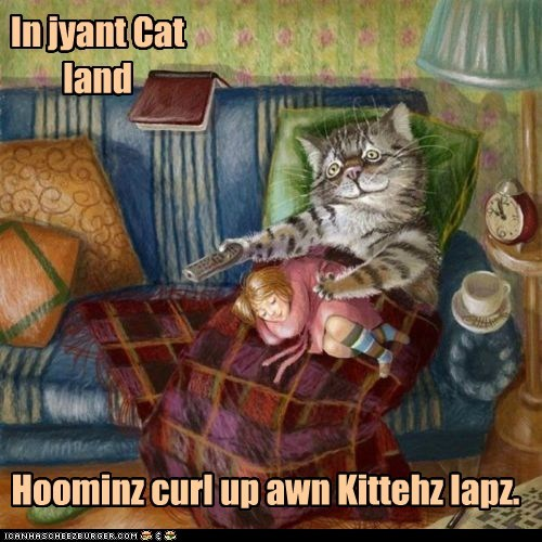 In jyant Cat land Hoominz curl up awn Kittehz lapz.