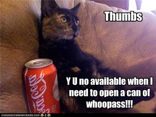Thumbs Y U no available when I need to open a can of whoopass!!!