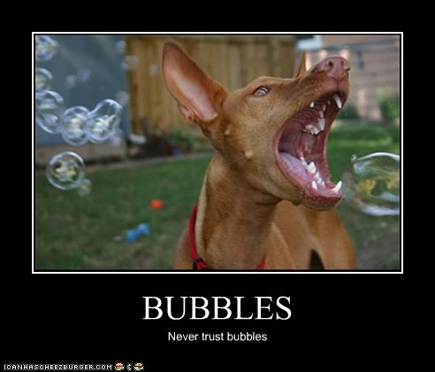 BUBBLES Never trust bubbles