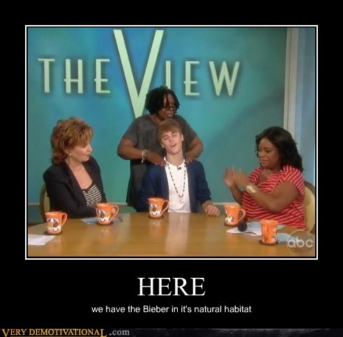 hilarious,justin bieber,natural habitat,the view,wtf