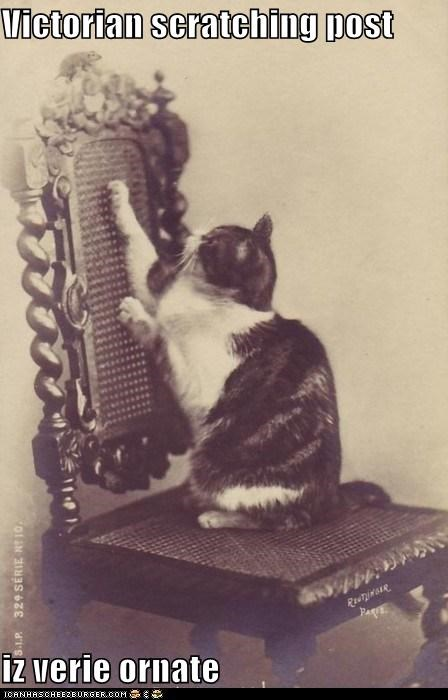 caption,captioned,cat,ornate,post,scratching,very,victorian