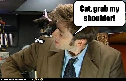adventure,cat,David Tennant,doctor who,X Grab My Y