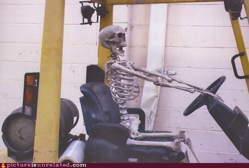 forklift heavy machinery skeleton undead wtf - 5462757888