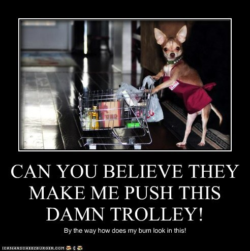 CAN YOU BELIEVE THEY MAKE ME PUSH THIS DAMN TROLLEY! By the way how does my bum look in this!