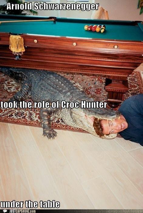 alligator Arnold Scwharzenegger bite caption contest