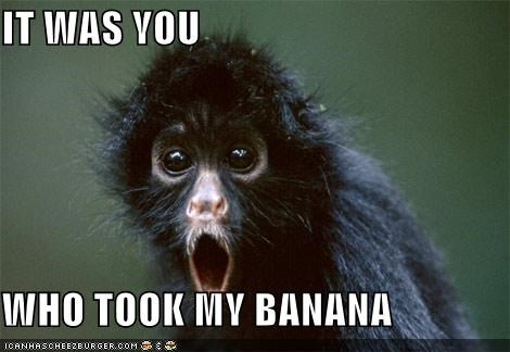 banana caption captioned monkey my noms realization Sad shocked surprised took upset you - 5464511488