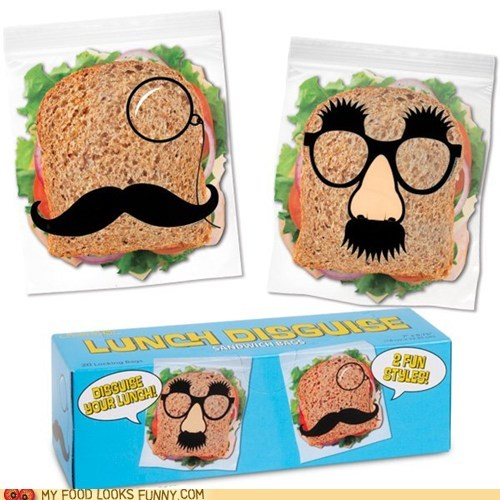 disguise,sandwich bags,ziploc