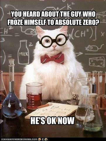 absolute zero,chemistry cat,ok,pun,science