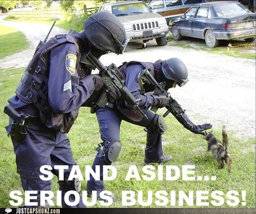 cat move please move police serious business stand aside