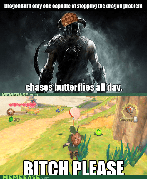 butterflies please Reframe Scumbag Steve Skyrim video games zelda - 5466347008