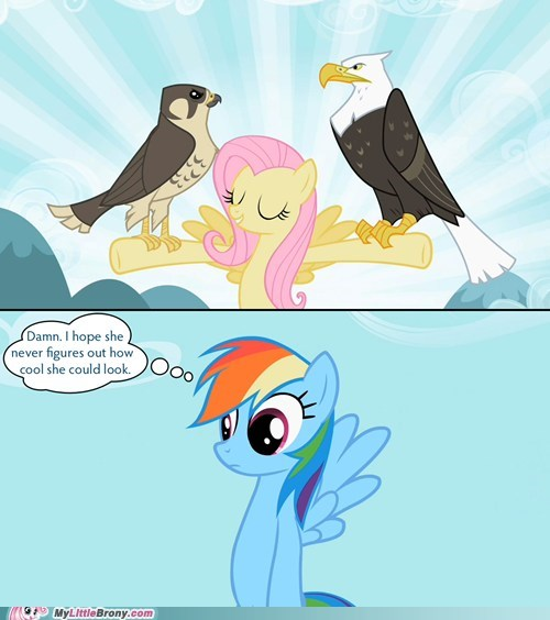 20 Percent Cooler fluttershy rainbow dash too damn high - 5466483200
