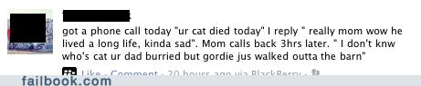 cat Death false alarm oops wtf - 5467983872