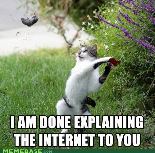 cat,explanation,i owe you nothing,internet,Memes,mouse