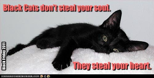 I'd gladly give mine. They steal your heart. Black Cats don't steal your soul. Black Friday 2011