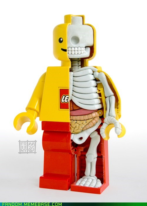 anatomy bones It Came From the Interwebz lego - 5468538880