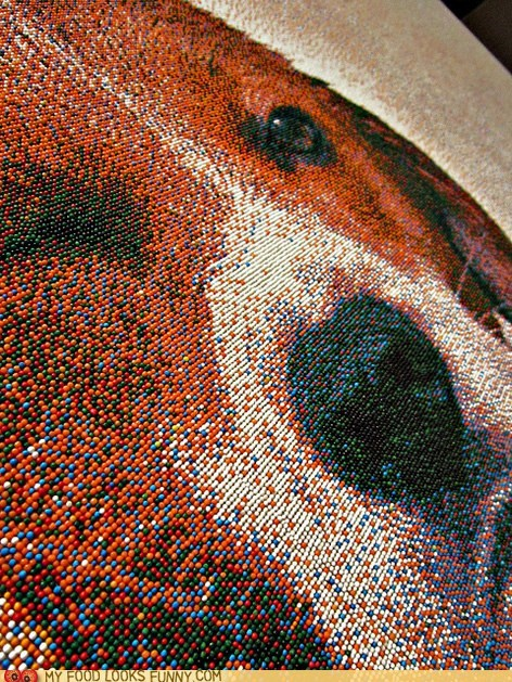 art cake dogs drawing mosaic sprinkles - 5468587520
