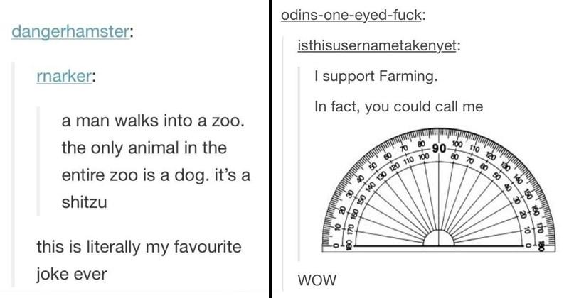 Funny tumblr puns, awful tumblr puns, bad tumblr puns.