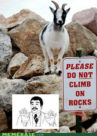calm down,goat,Rage Comics,rocks,whoa
