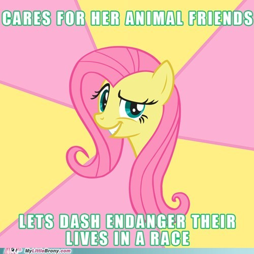 animals fluttershy meme - 5470235648