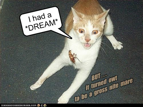 I had a *DREAM* BUT . . . it turned owt ta be a gross nite mare