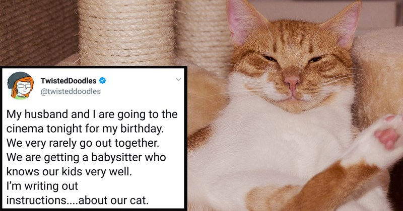 twitter cats being jerks cats are jerks babysitting babysitting story funny tweets funny notes Cats funny animals being jerks - 5470469