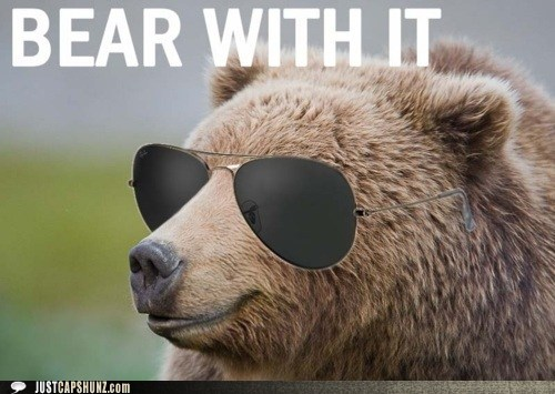 animals bear Deal With It sunglasses - 5471471872