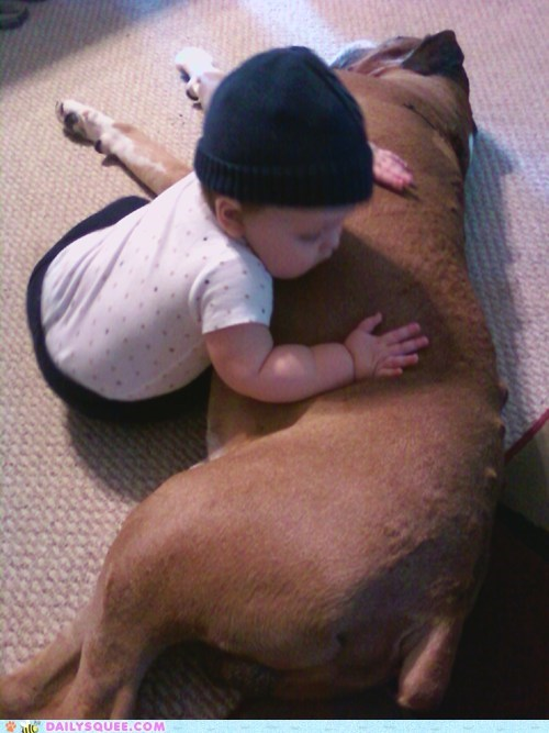 child,children,cuddling,dogs,friends,friendship,human,Interspecies Love,patience,reader squees