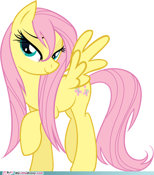 best of week fluttershy i really like her mane meme ponies wet mane fluttershy - 5471767808