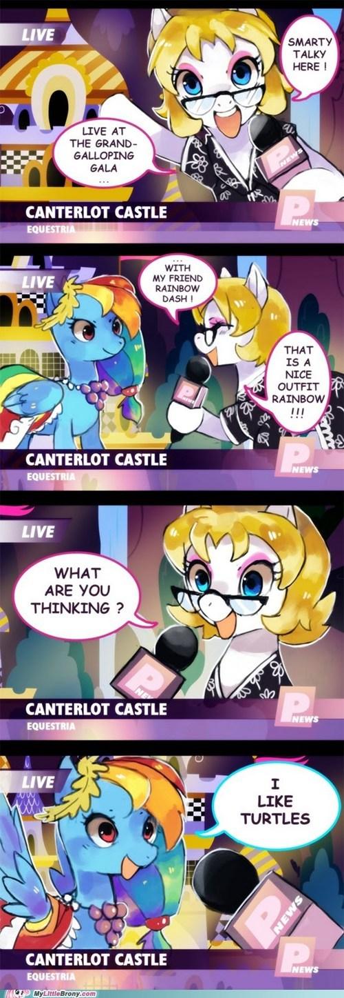 canterlot comics i like turtles pet rainbow dash tank the gala - 5472017408