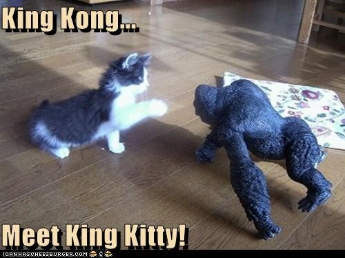 King Kong...  Meet King Kitty!