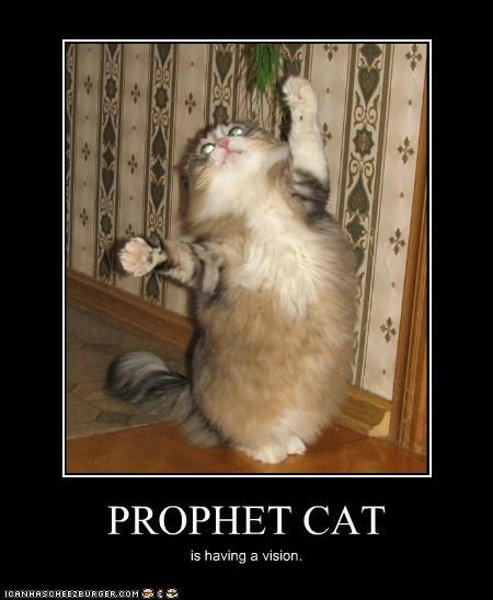 PROPHET CAT