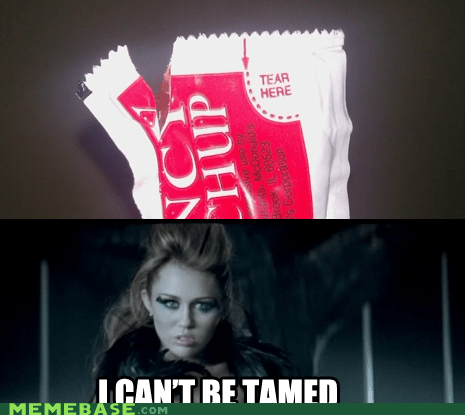cant-be-tamed,Memes,miley cyrus