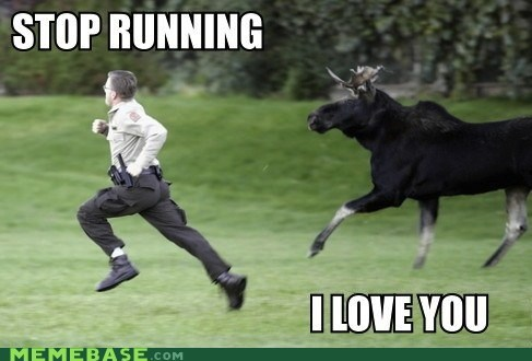 heart love you Memes moose running - 5472409344