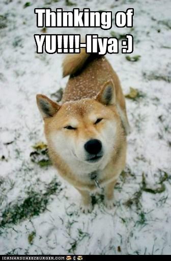 Thinking of YU!!!!-liya :)