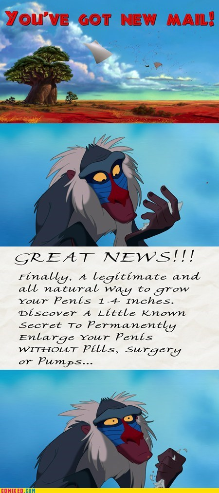 From the Movies lion king rafiki spam youve-got-mail - 5472725760