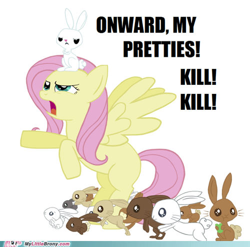 animals fluttershy kill SOON the internets - 5473296896