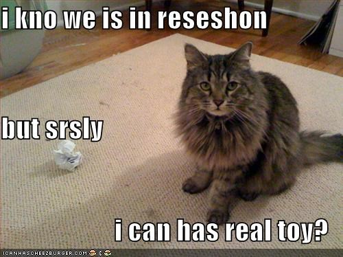 lolcats paper recession toys - 547331328