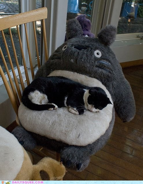 acting like animals,best ever,cat,Hall of Fame,happy,Movie,my neighbor totoro,sleeping,stuffed animal,totoro